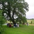 Intorno alla quercia