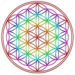 il-fiore-della-vita-arcobaleno